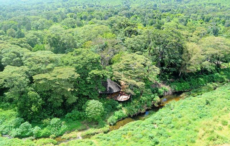 Aerial view of Kitich Forest Camp
